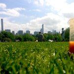 10 gezonde New York inspired smoothies